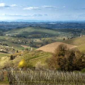 Bretta Rossa | Secco Pistoia | Bollicine Italiane
