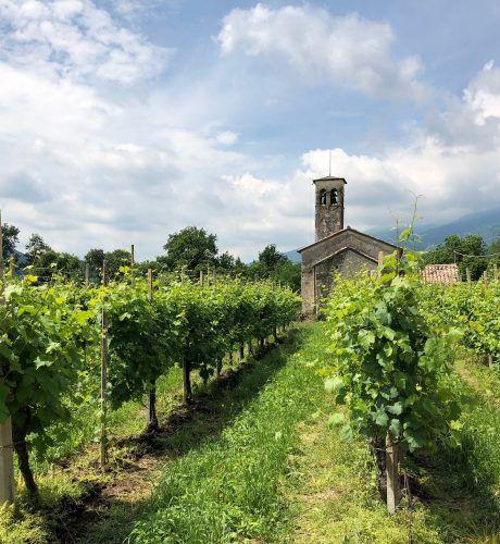 Borgo Col | Secco Pistoia | Bollicine Italiane